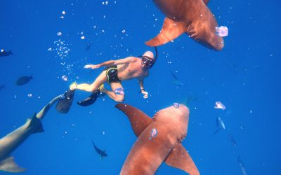 Atrapado en Maldivas